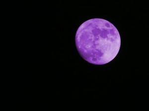 Bulan itu Ungu